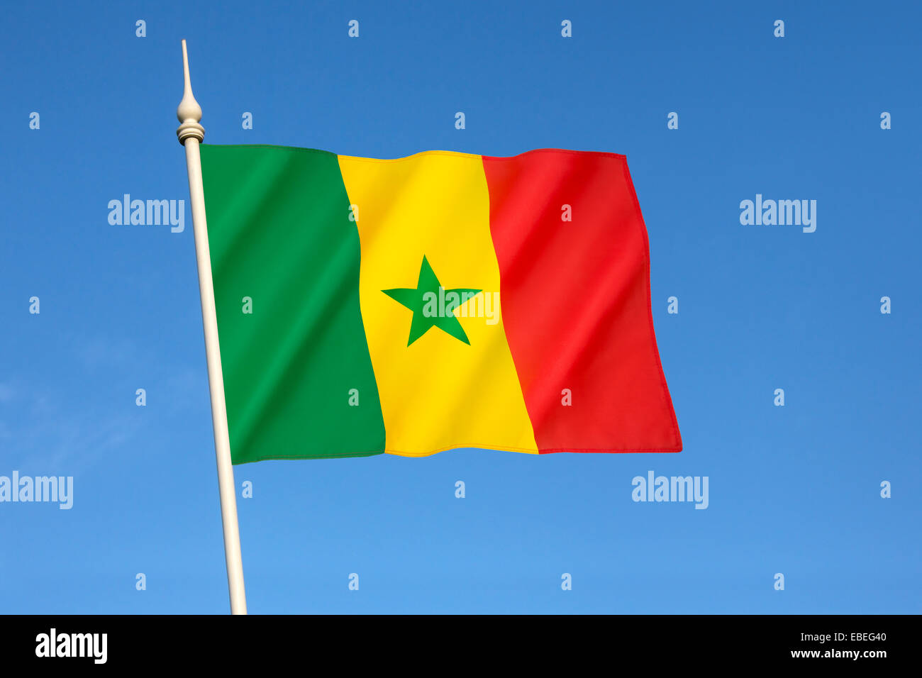 Drapeau du Sénégal Photo Stock