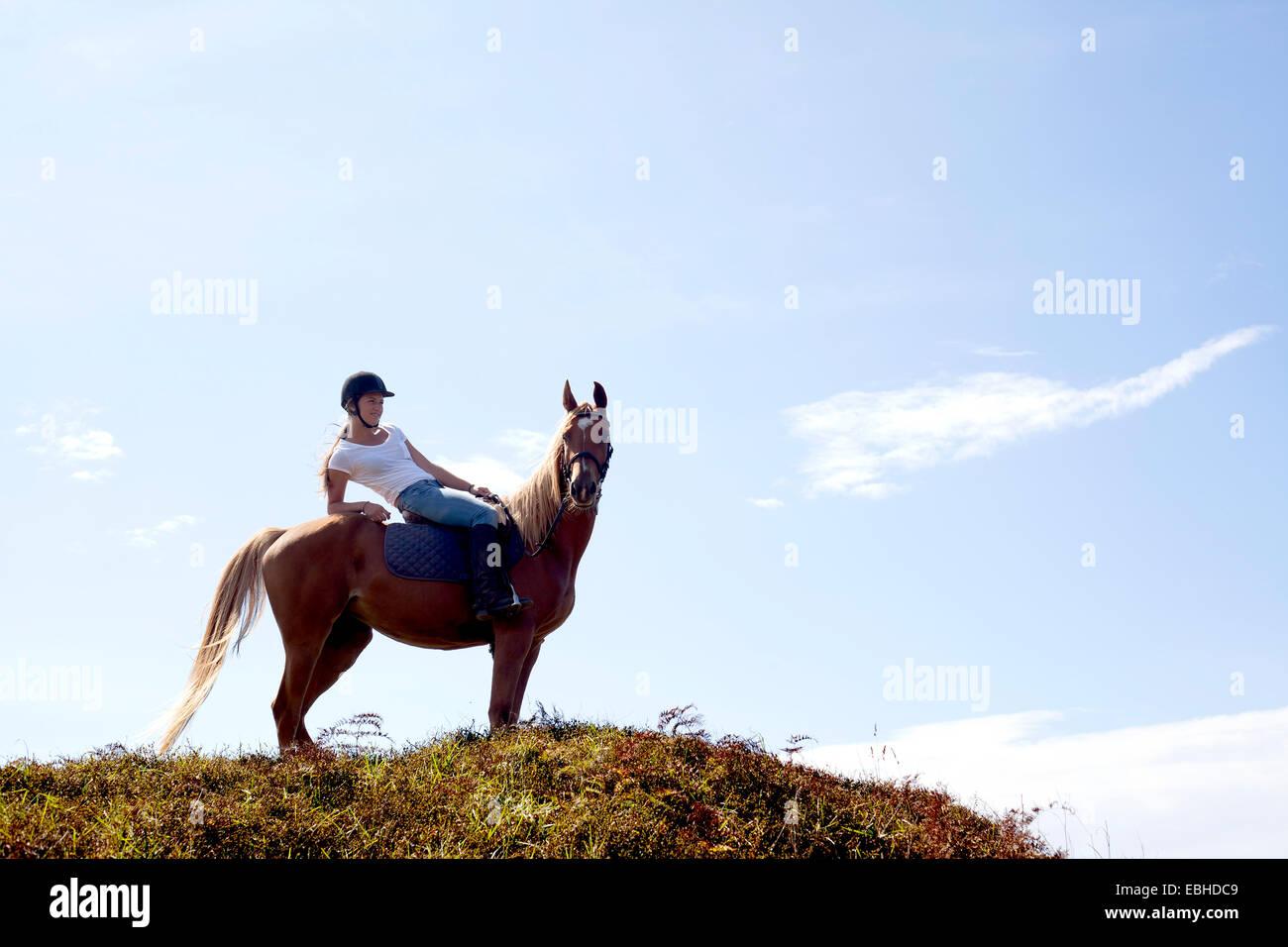 Horse Rider sur colline, Pakiri Beach, Auckland, Nouvelle-Zélande Photo Stock