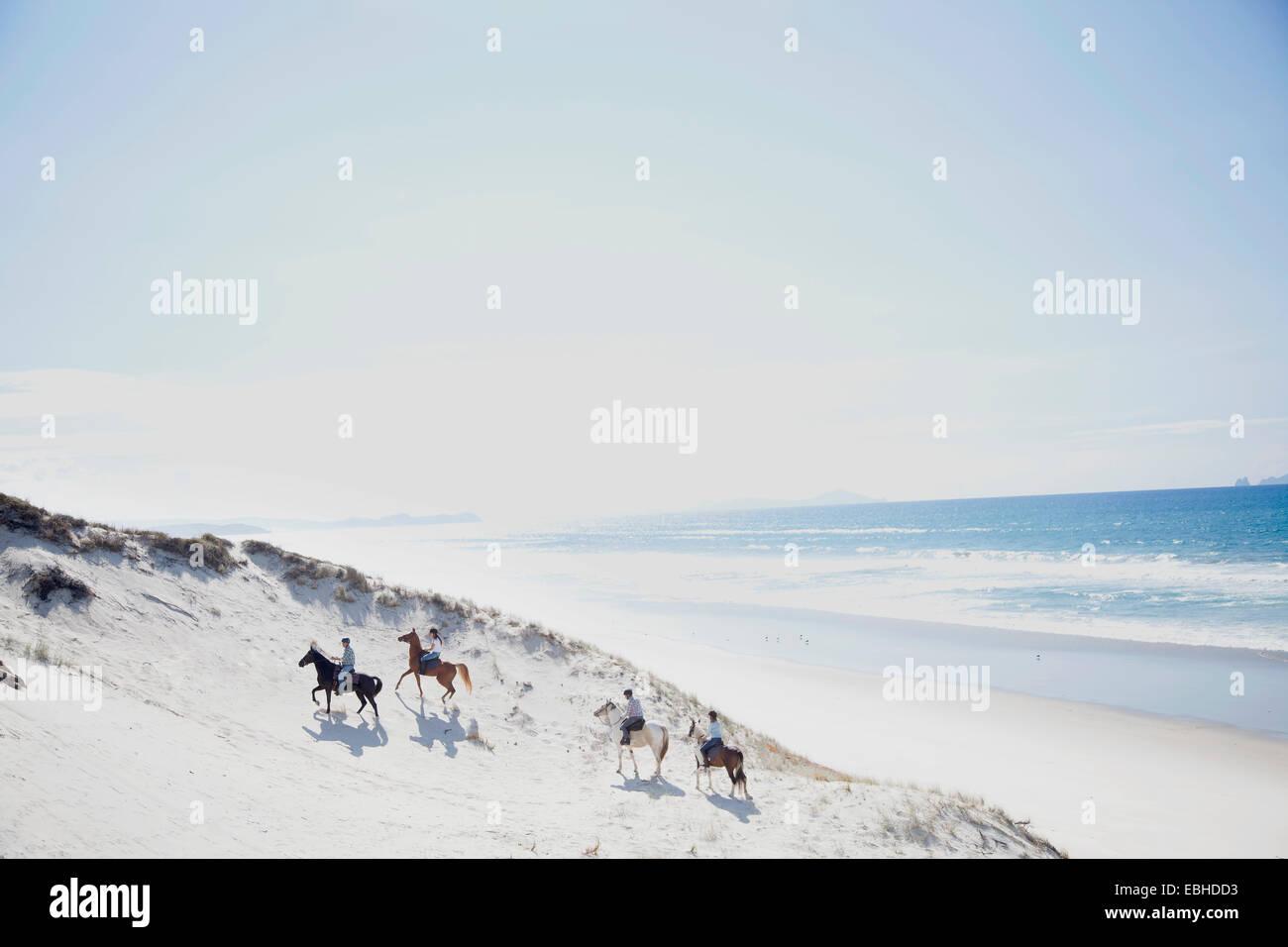 L'équitation, Pakiri Beach, Auckland, Nouvelle-Zélande Photo Stock