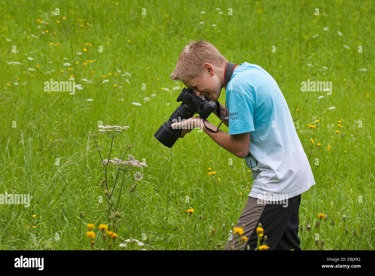 Garçon des photographies en pleine nature, Allemagne Photo Stock