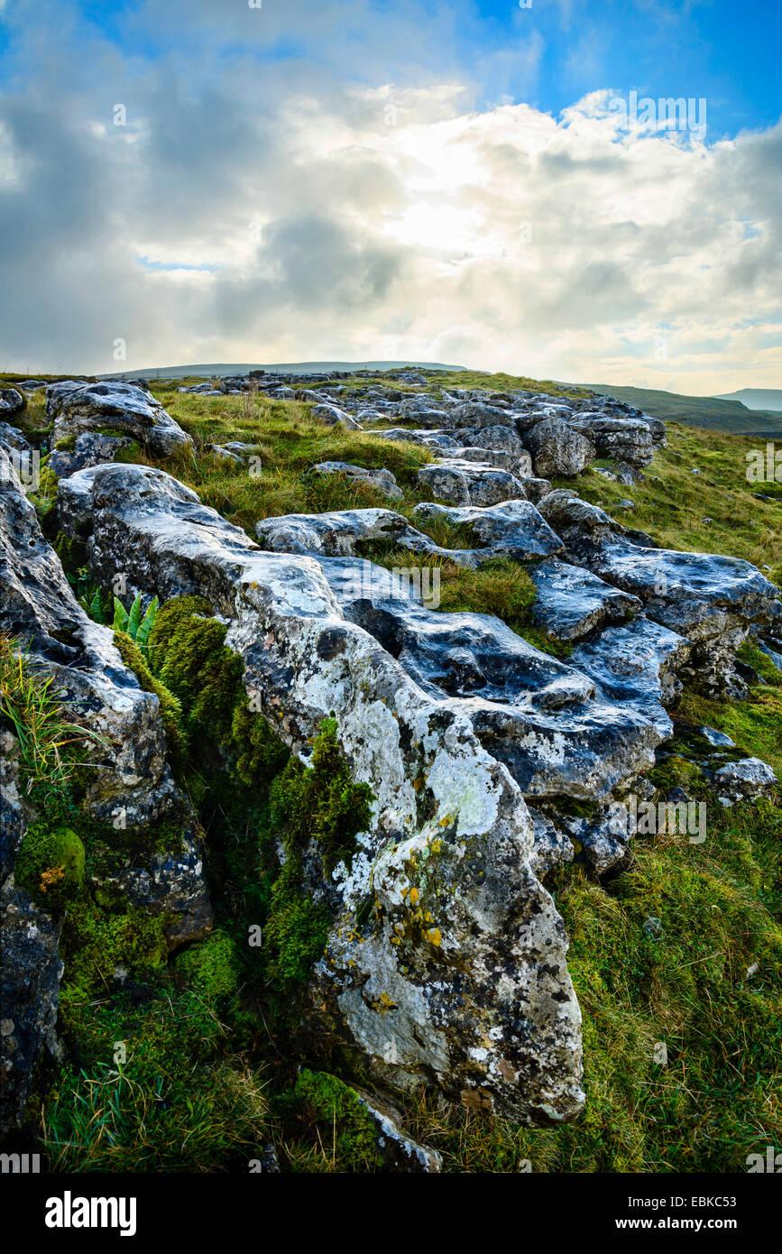 Lapiez à Winskill pierres dans le Parc National des Yorkshire Dales England Photo Stock