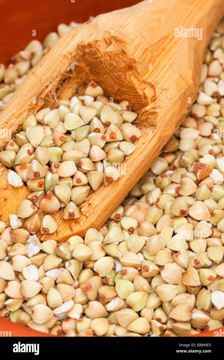 Le sarrasin (Fagopyrum esculentum), les graines dans le plat avec une cuillère en bois Photo Stock