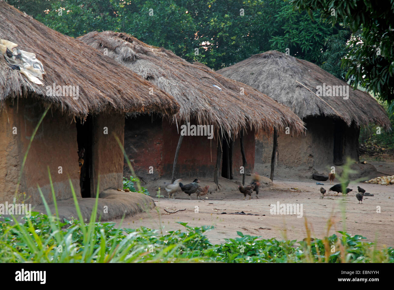 Village africain, l'Ouganda Photo Stock
