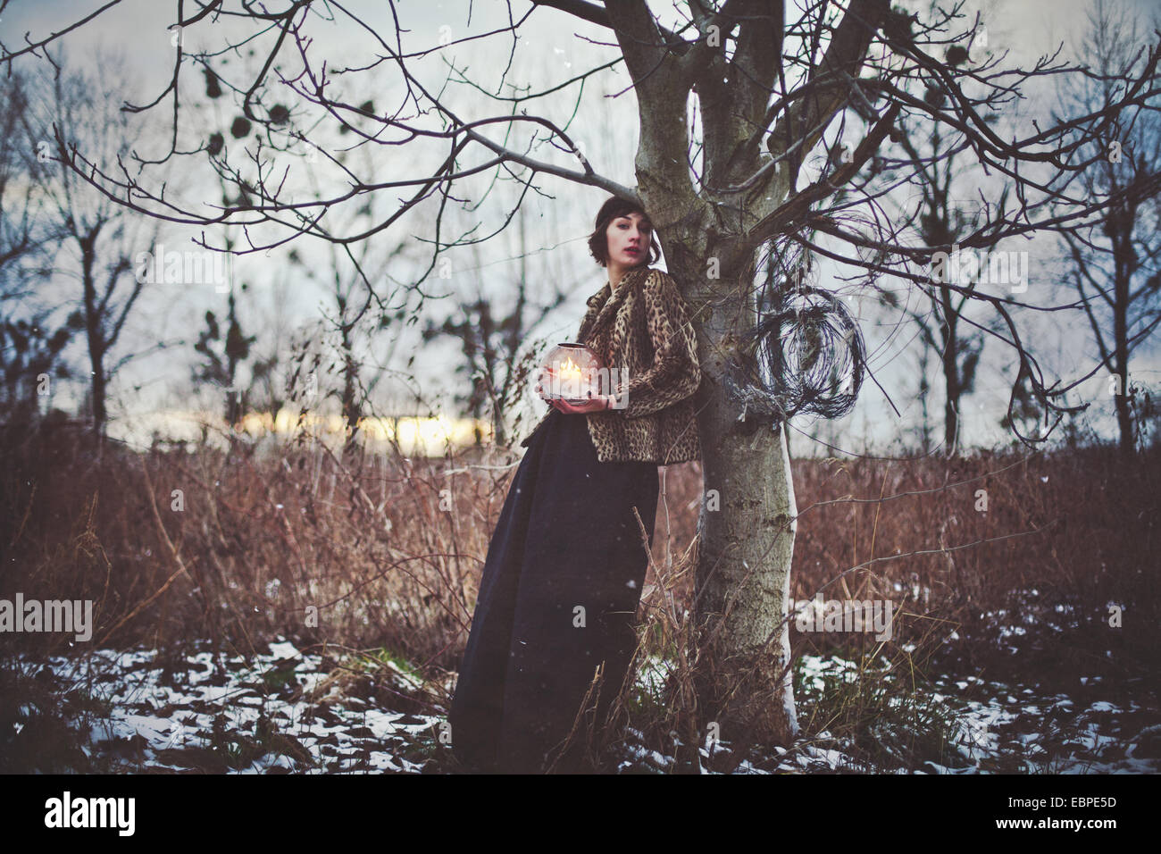Une femme debout contre l'arbre holding light in forest Photo Stock