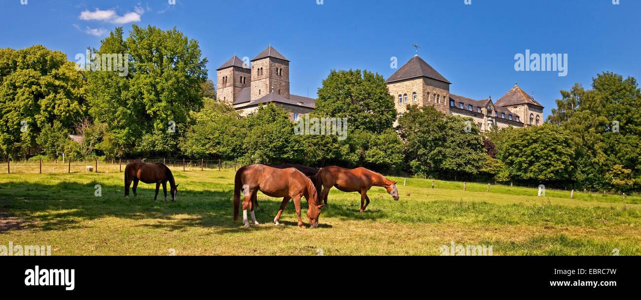 Cheval domestique (Equus caballus przewalskii. f), le pâturage des chevaux en face du monastère bénédictin Photo Stock