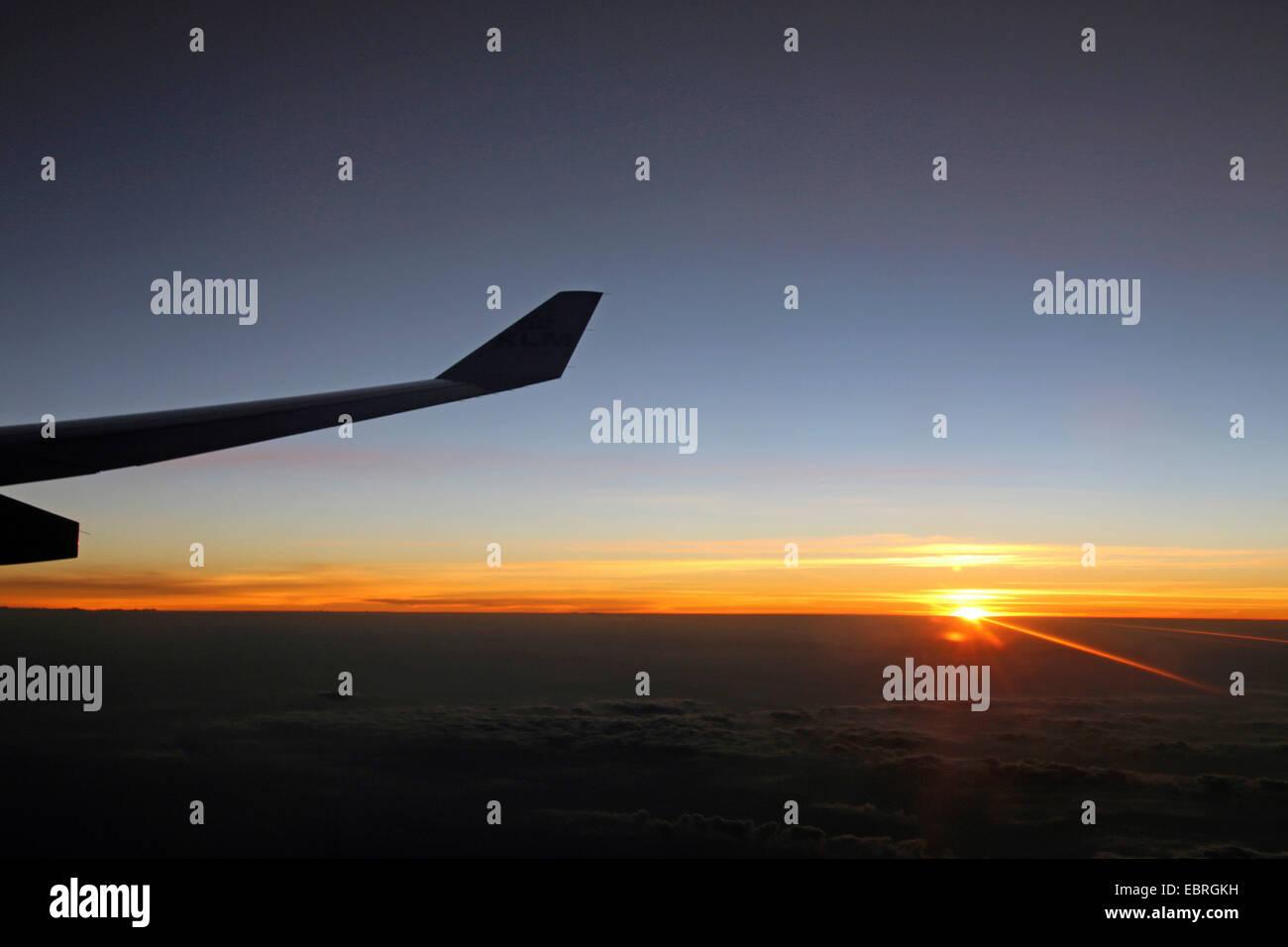 Feuille de l'air dans le coucher du soleil Photo Stock