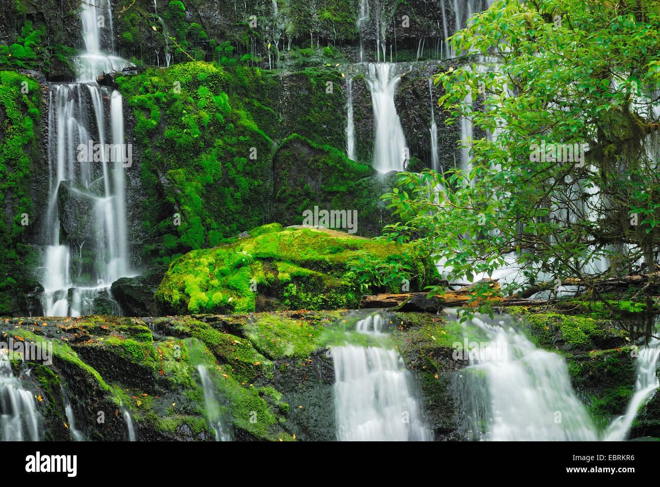 Purakaunui Falls, Nouvelle-Zélande, Sud de l'île, le Parc Forestier de Catlins Banque D'Images