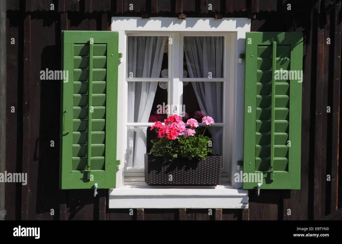 Fenêtre avec les volets ouverts et jardinière de géraniums, Suisse Banque D'Images