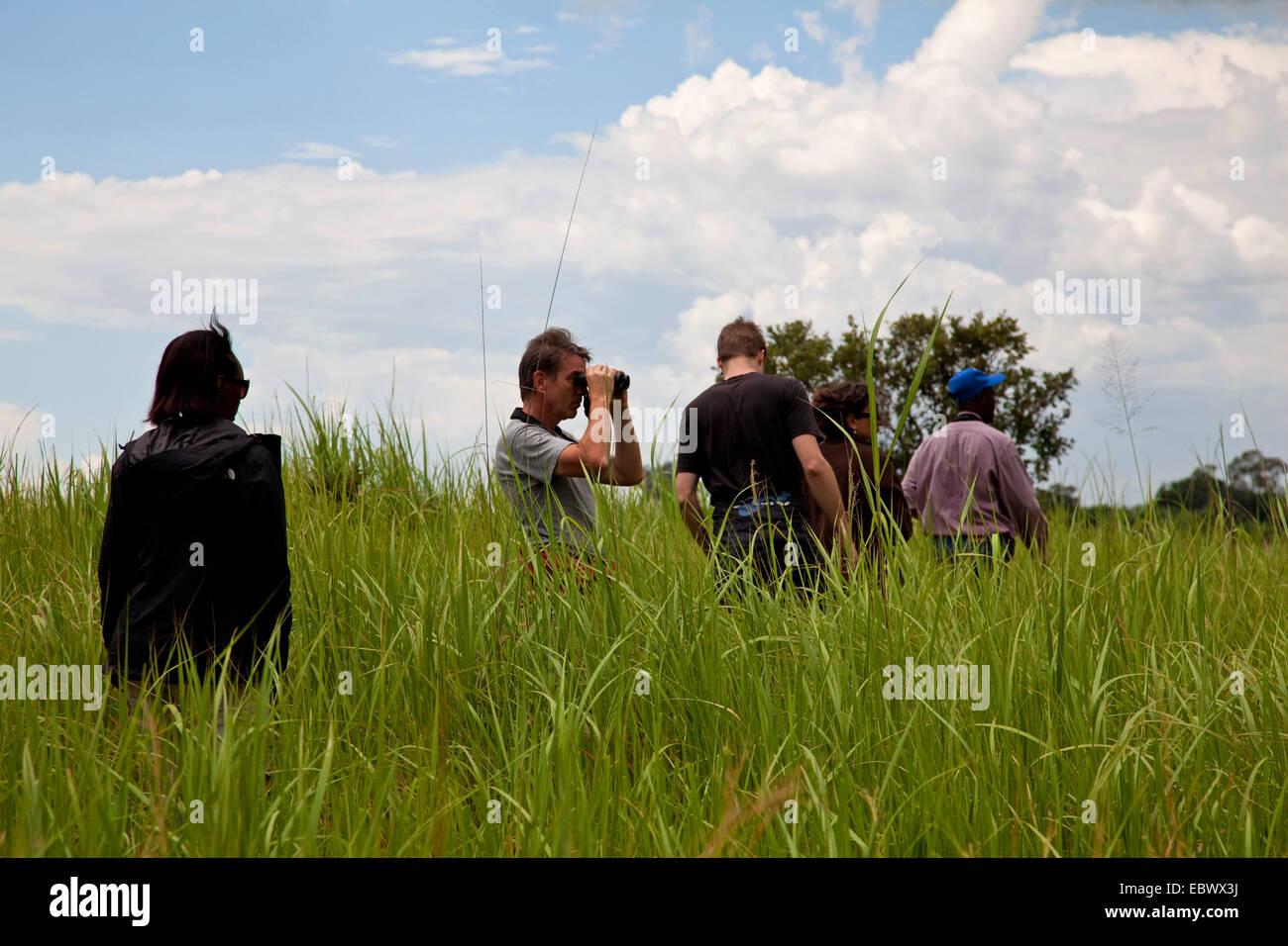Groupe touristique marche à travers l'herbe haute dans le Parc National de la Ruvubu dans l'Est du Photo Stock