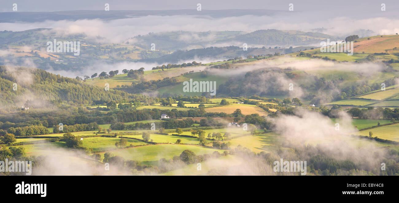 La campagne couverte de brume des Brecon Beacons, Carmarthenshire, Pays de Galles. L'été (août) Photo Stock
