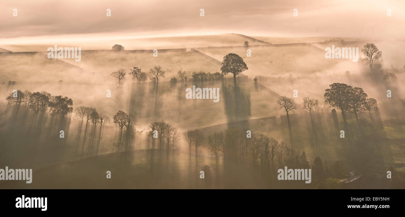 Brume matinale des terres agricoles couvertes, Lake District, Cumbria, Angleterre. L'automne (novembre) 2014. Photo Stock