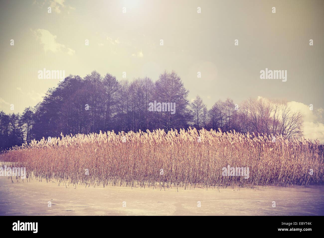 Retro Vintage image aux couleurs du lac en hiver. Photo Stock