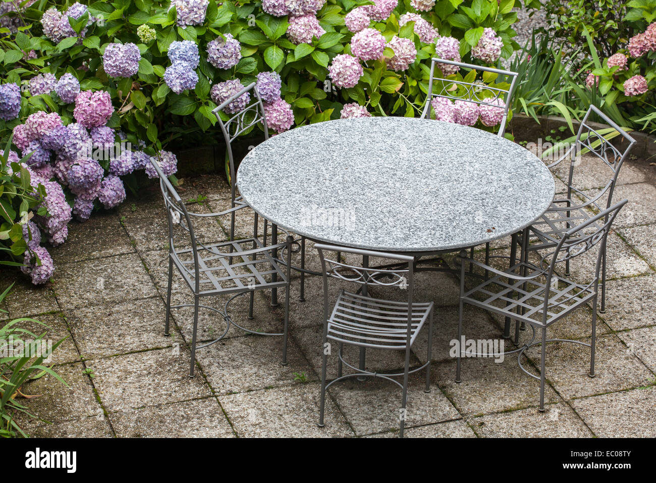 Table et chaises de jardin avec fleurs hortensia couleur Banque D ...