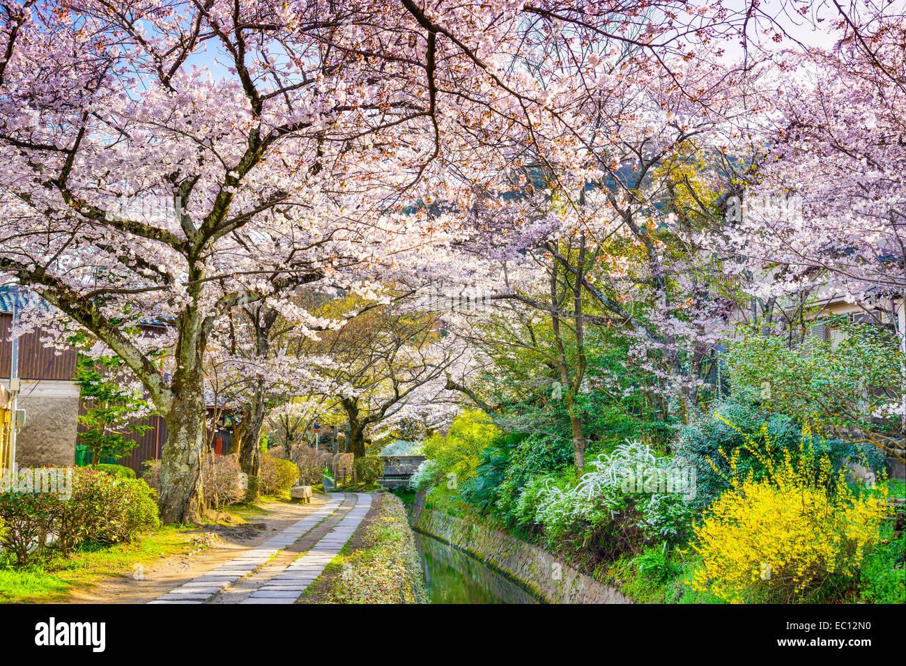 Kyoto, Japon à Philosopher's Way au printemps. Banque D'Images