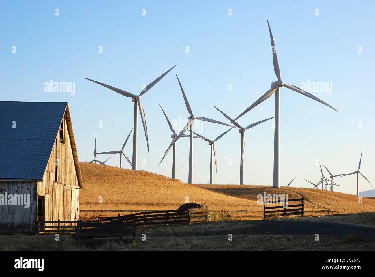 Ferme éolienne sur les terres agricoles Photo Stock
