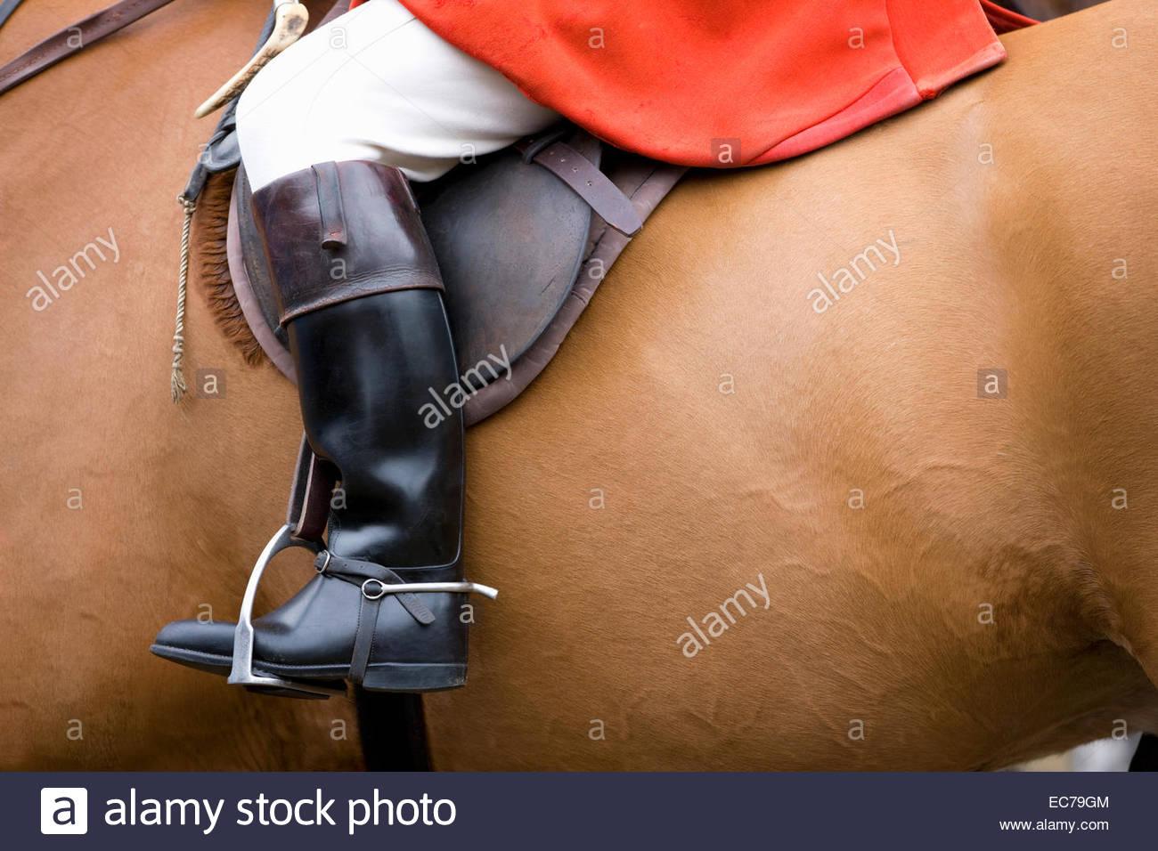 Close-up de coffre de cavalier au cheval Photo Stock
