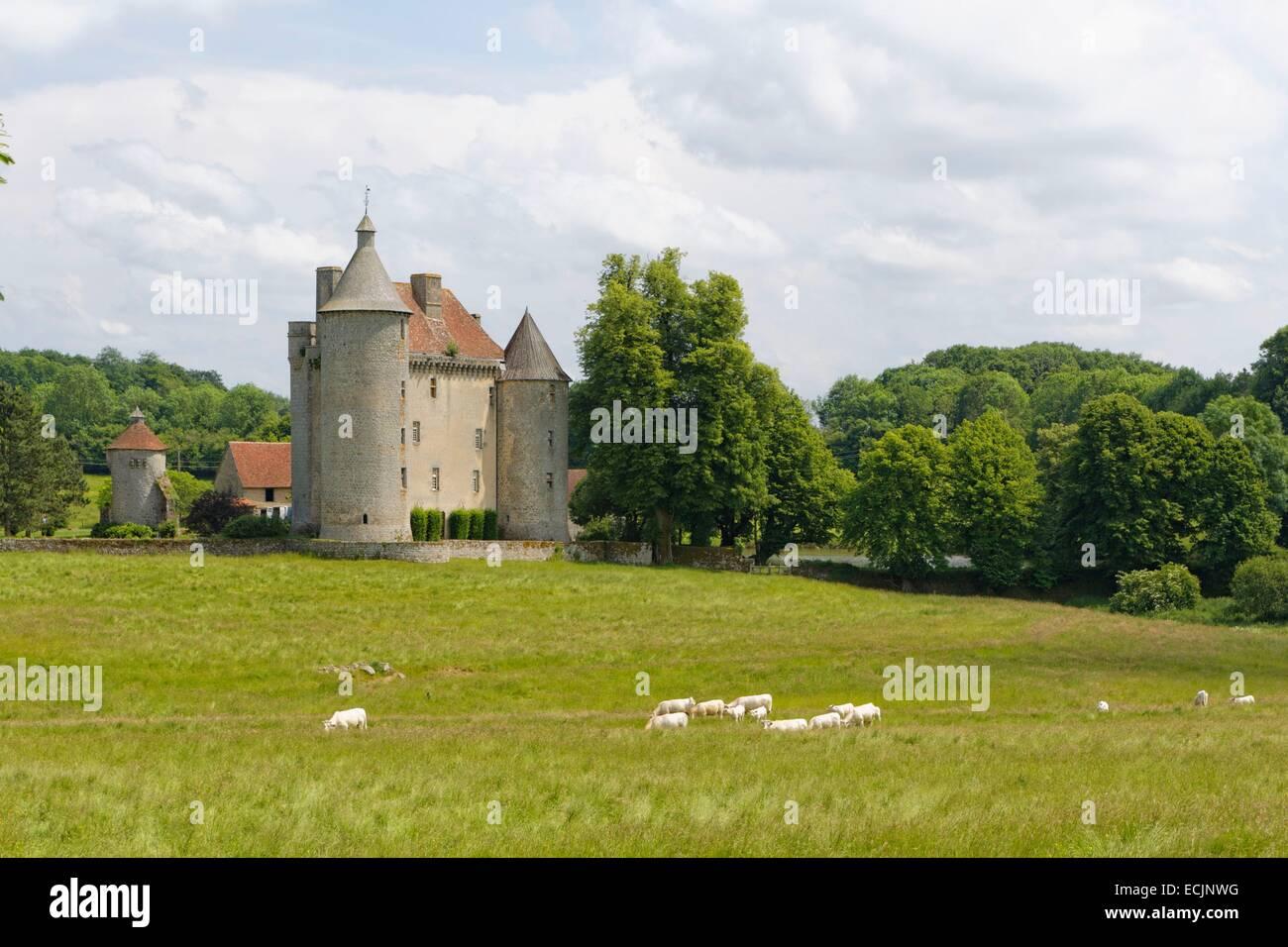 France, Creuse, Saint Pardoux les Cards, Château de Villemonteix Photo Stock