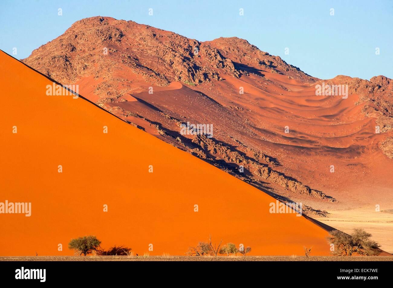 La Namibie, région Hardap, désert du Namib, le Namib Namib-Naukluft national park, La Mer de Sable classée au Patrimoine Mondial de l'UNESCO, les dunes de Sossusvlei Banque D'Images