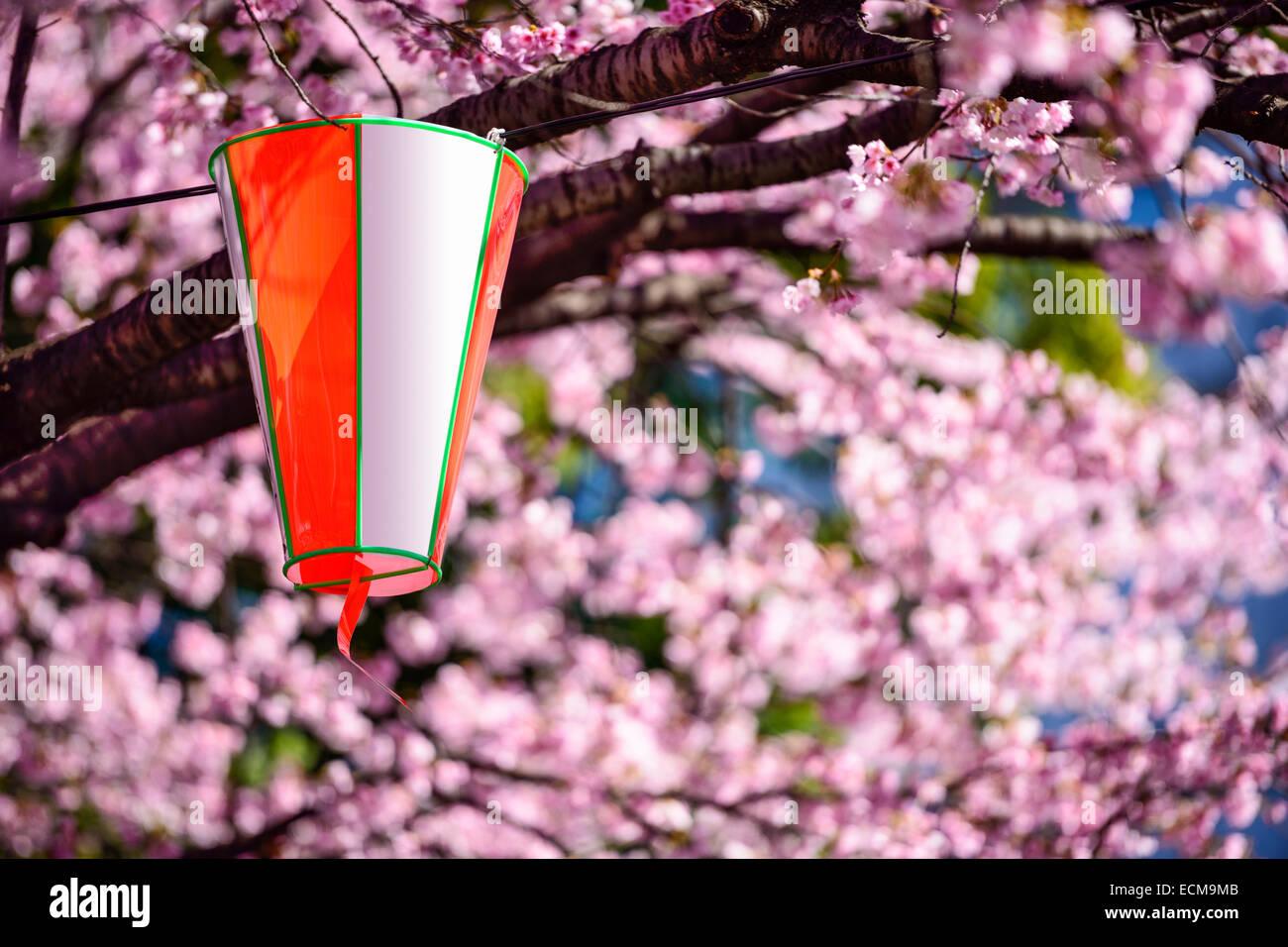 Tokyo, Japon cerisiers et des lanternes dans le parc Ueno. Banque D'Images