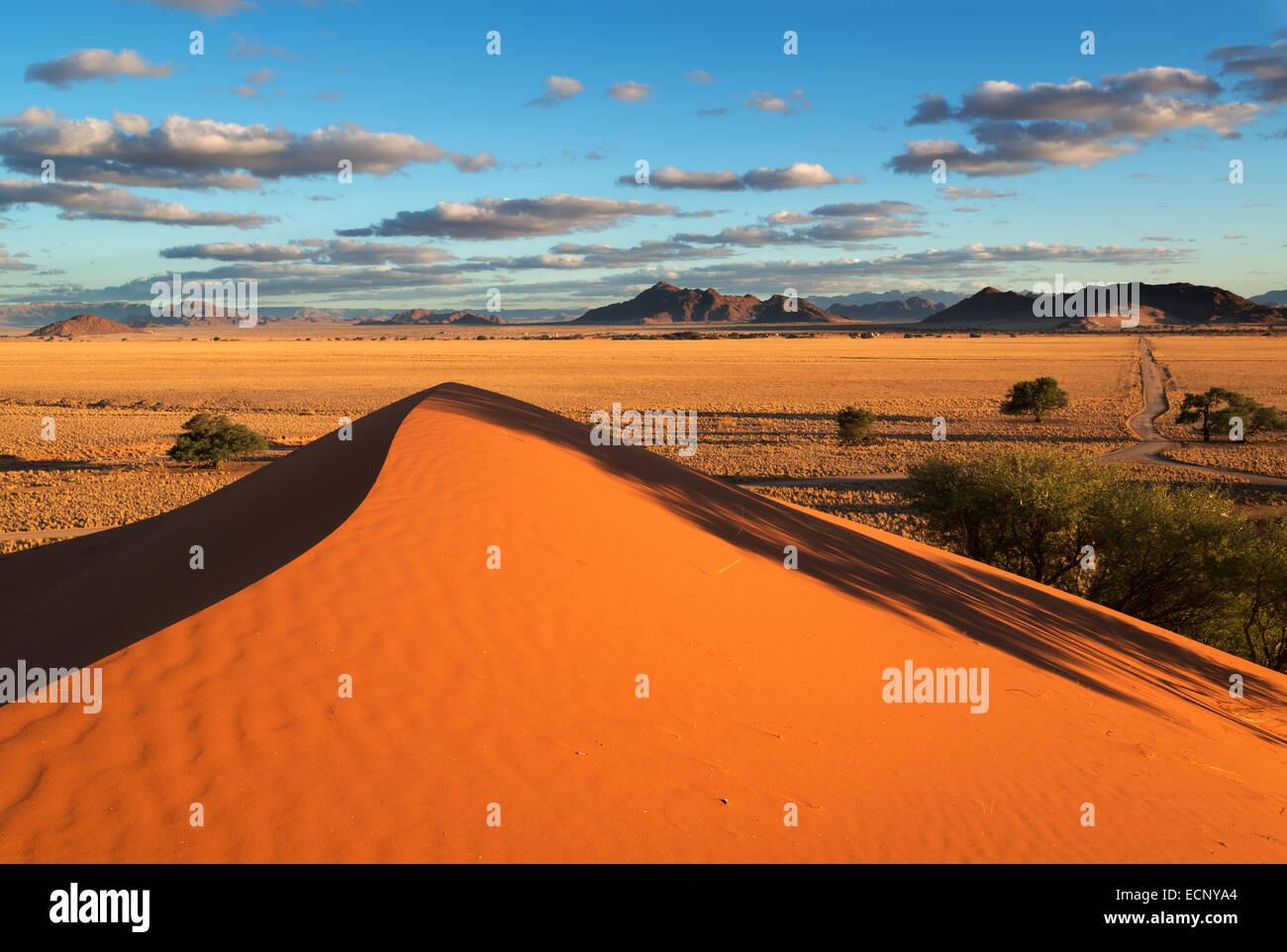 Désert du Namib Photo Stock