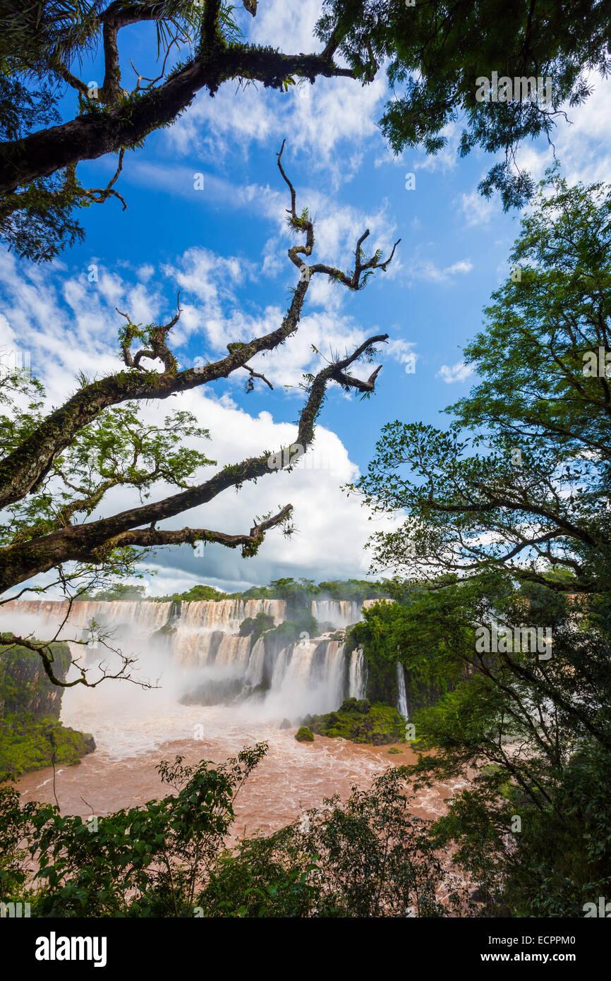 Iguazu Falls, chutes d'Iguazú, chutes d'Iguaçu ou chutes d'Iguaçu sont les cascades de la rivière Iguazu à la frontière Banque D'Images