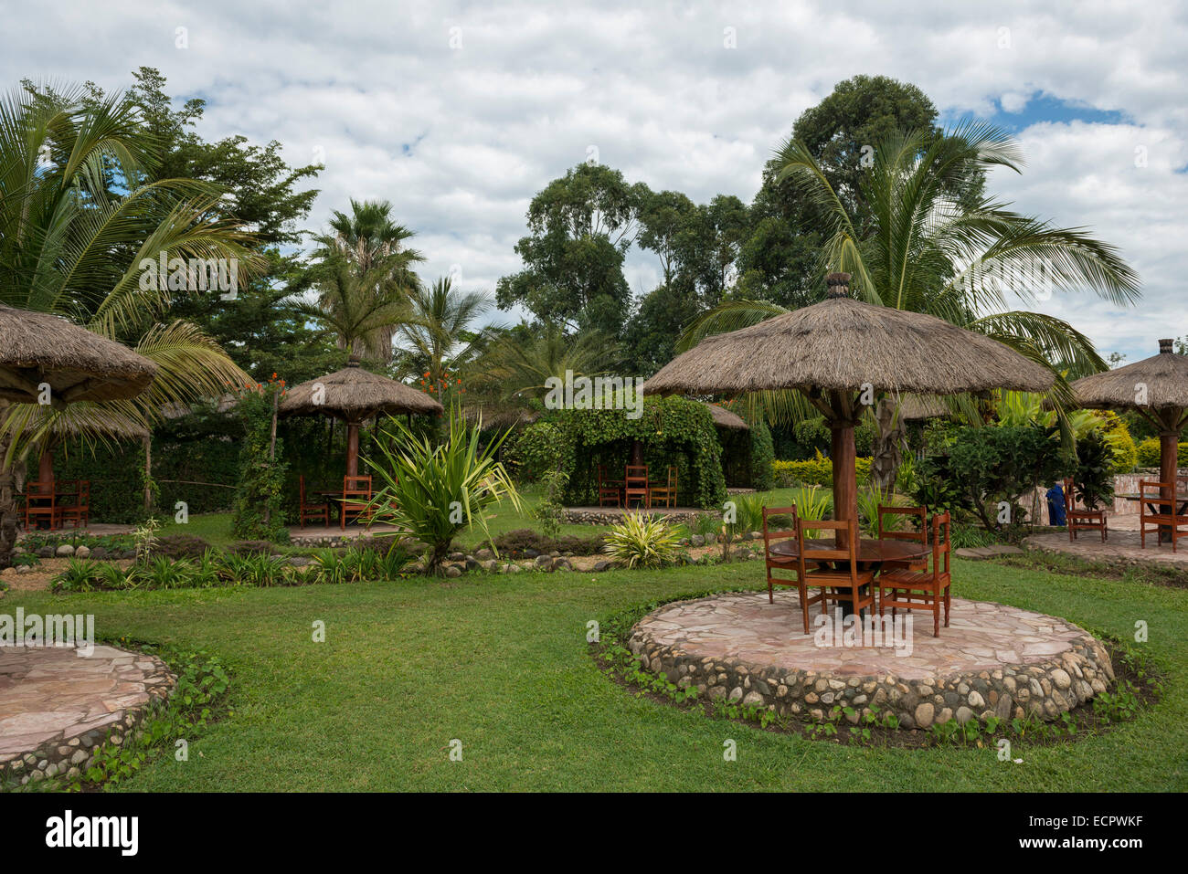 Jardins, Ouganda Photo Stock