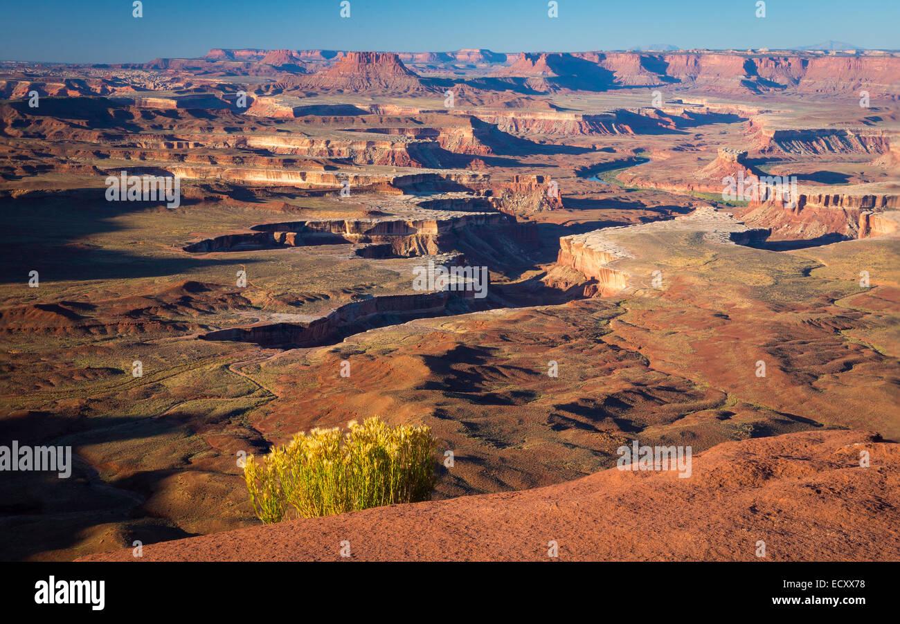 Le Grandview Point dans Canyonlands National Park, Utah Photo Stock