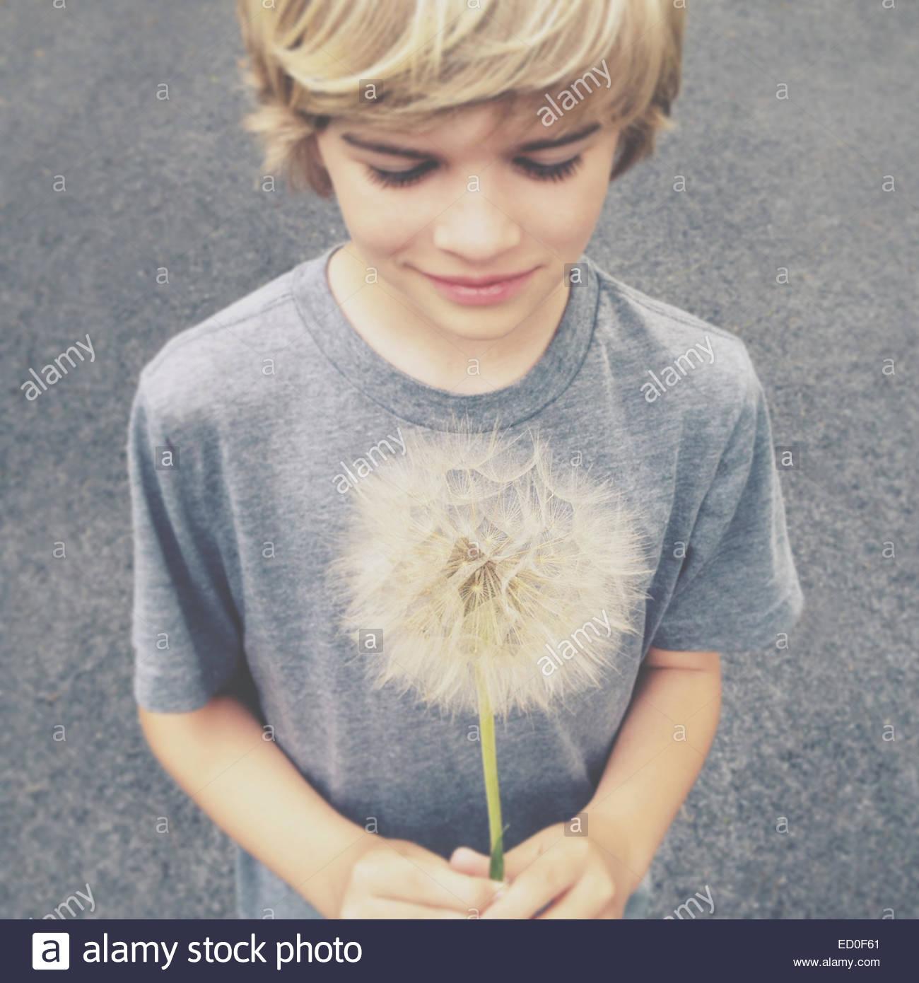 Garçon Blond holding dandelion géant Photo Stock