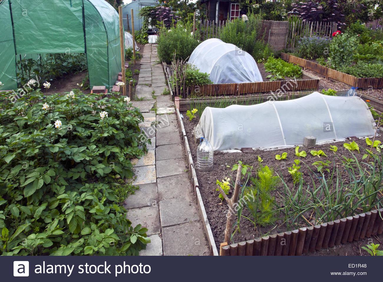 Serre Plastique Et D Herbes Et Legumes De Plus En Plus Cuisine