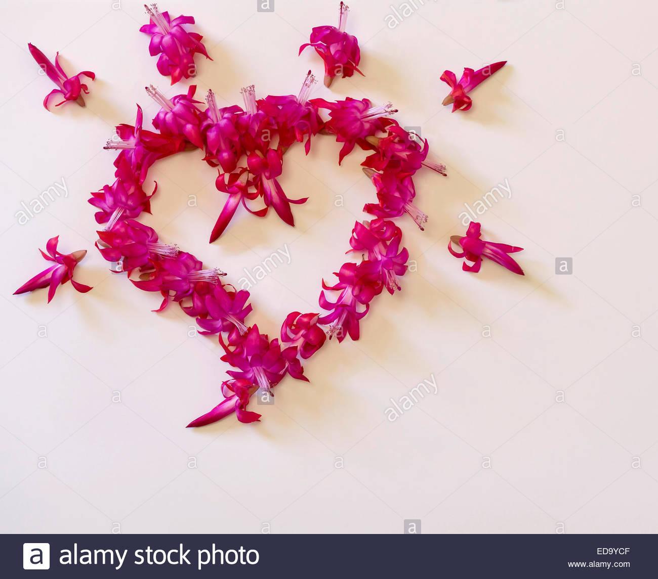 L Amour Le Coeur Le Coeur De Fleurs Mariage Anniversaire Fete