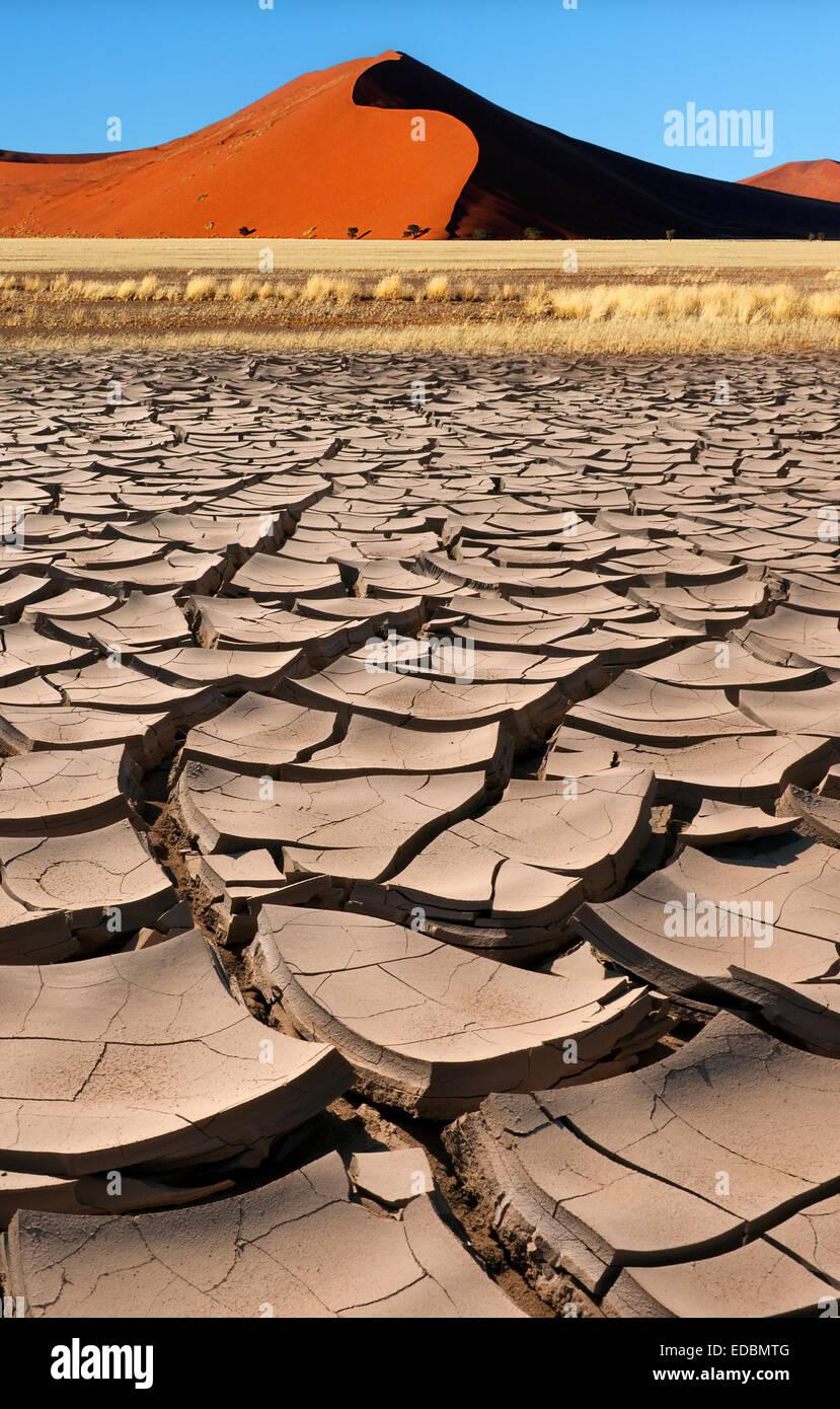 La terre sèche et de dune de sable du soleil tôt le matin près de Sossusvlei dans le désert Photo Stock