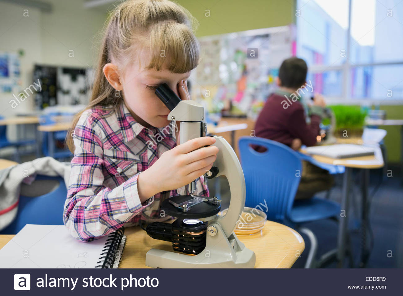 Elementary Student using microscope in laboratory Photo Stock