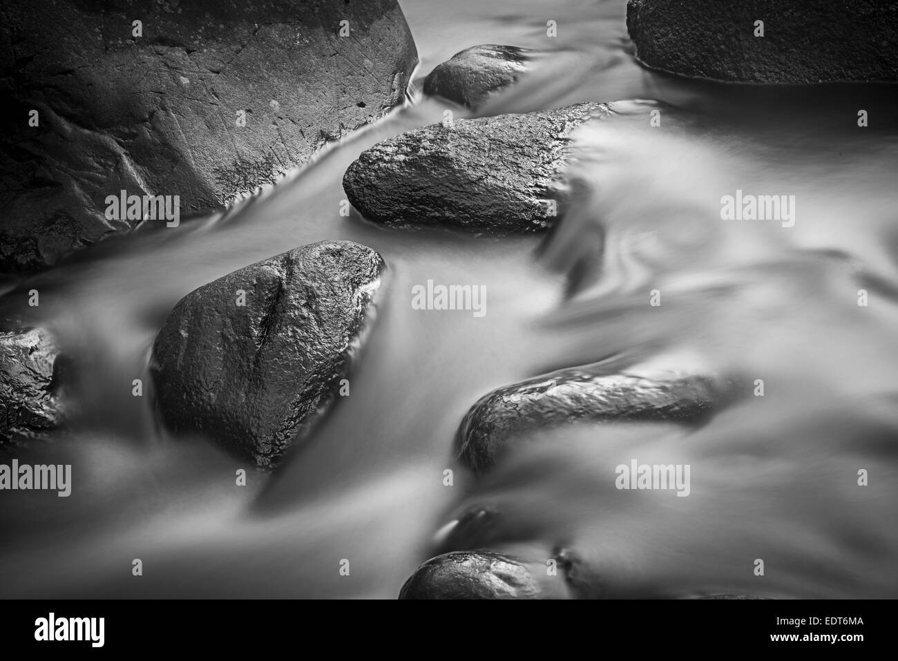 L'eau qui coule & Rocks dans le ruisseau Black & White Photo Stock