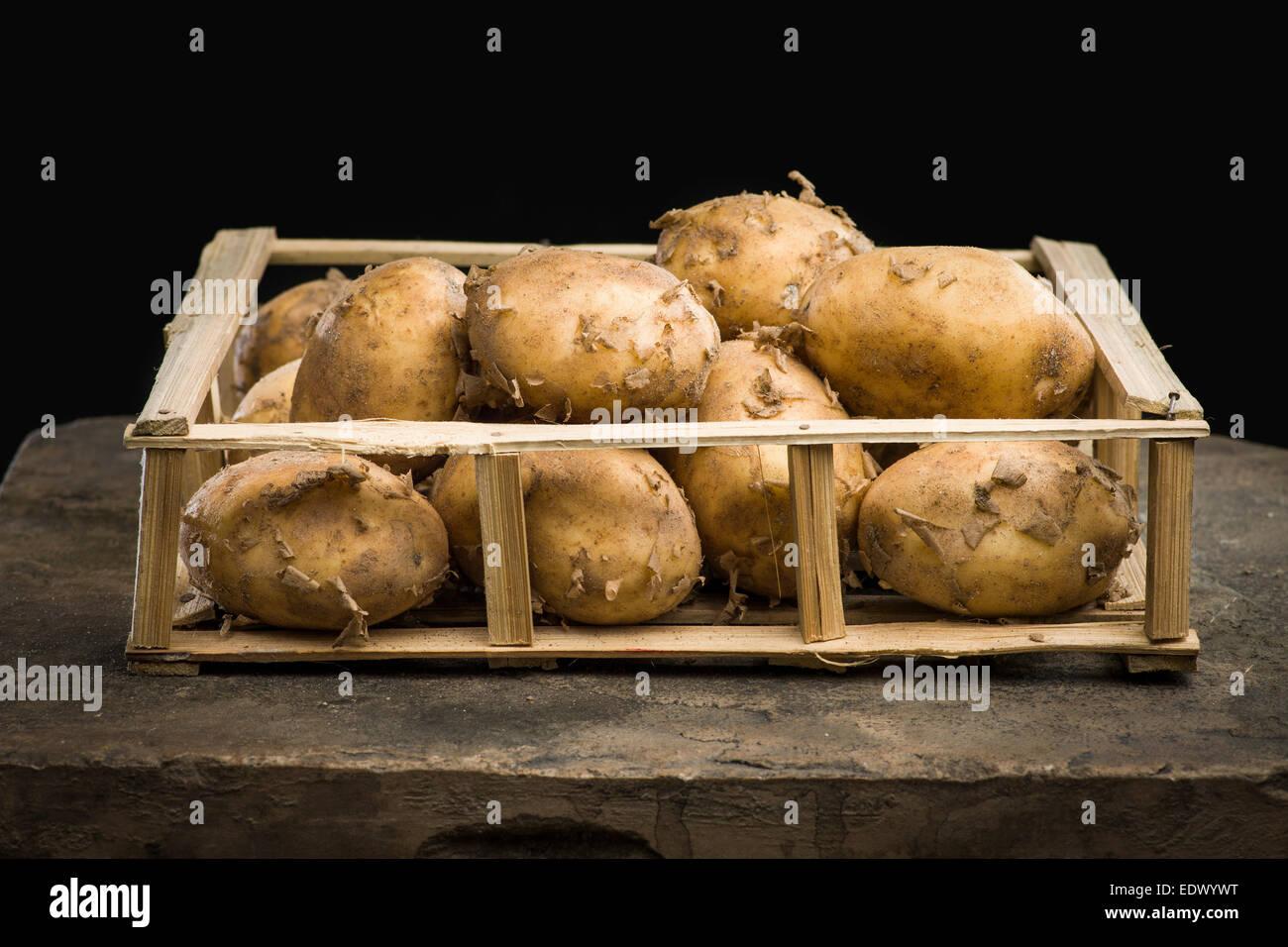 Les jeunes pommes mûres dans une caisse en bois sur le fond sombre Photo Stock