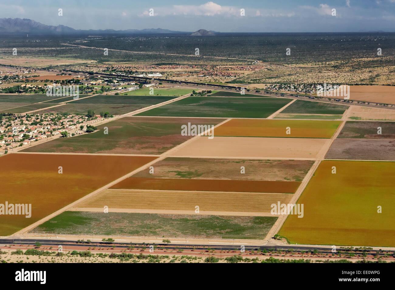 L'agriculture, de l'antenne Marana, Arizona Photo Stock