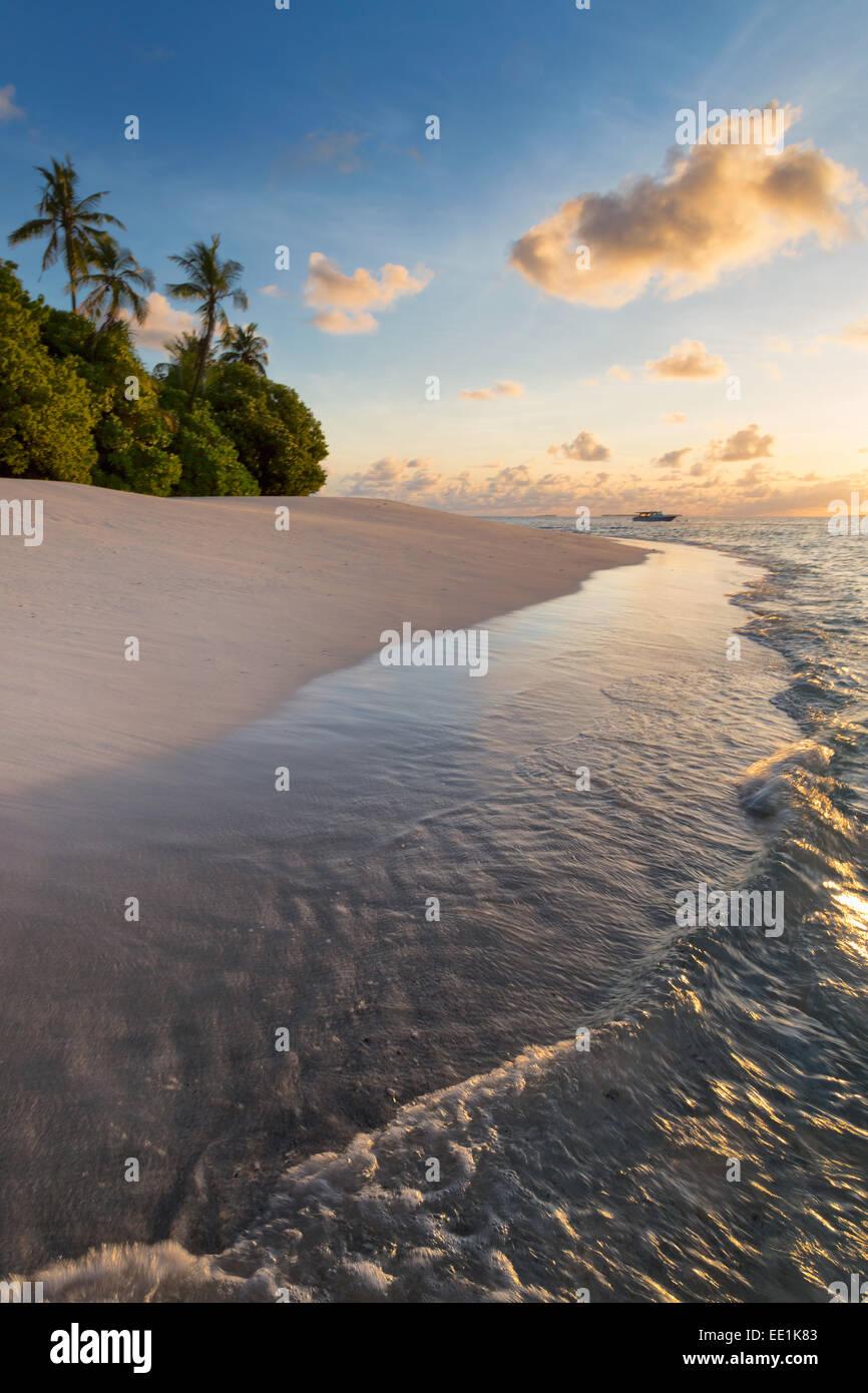 La lumière du matin sur une plage déserte sur une île dans le Nord de l'Atoll d'Huvadhoo, Photo Stock