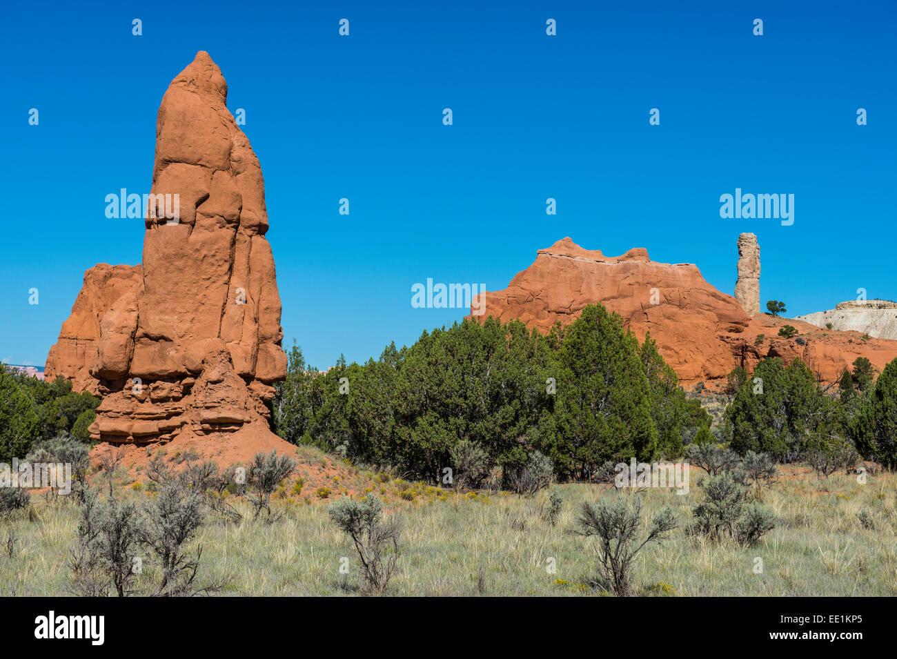 Les cheminées de grès dans le parc d'état de Kodachrome Basin, Utah, États-Unis d'Amérique, Photo Stock
