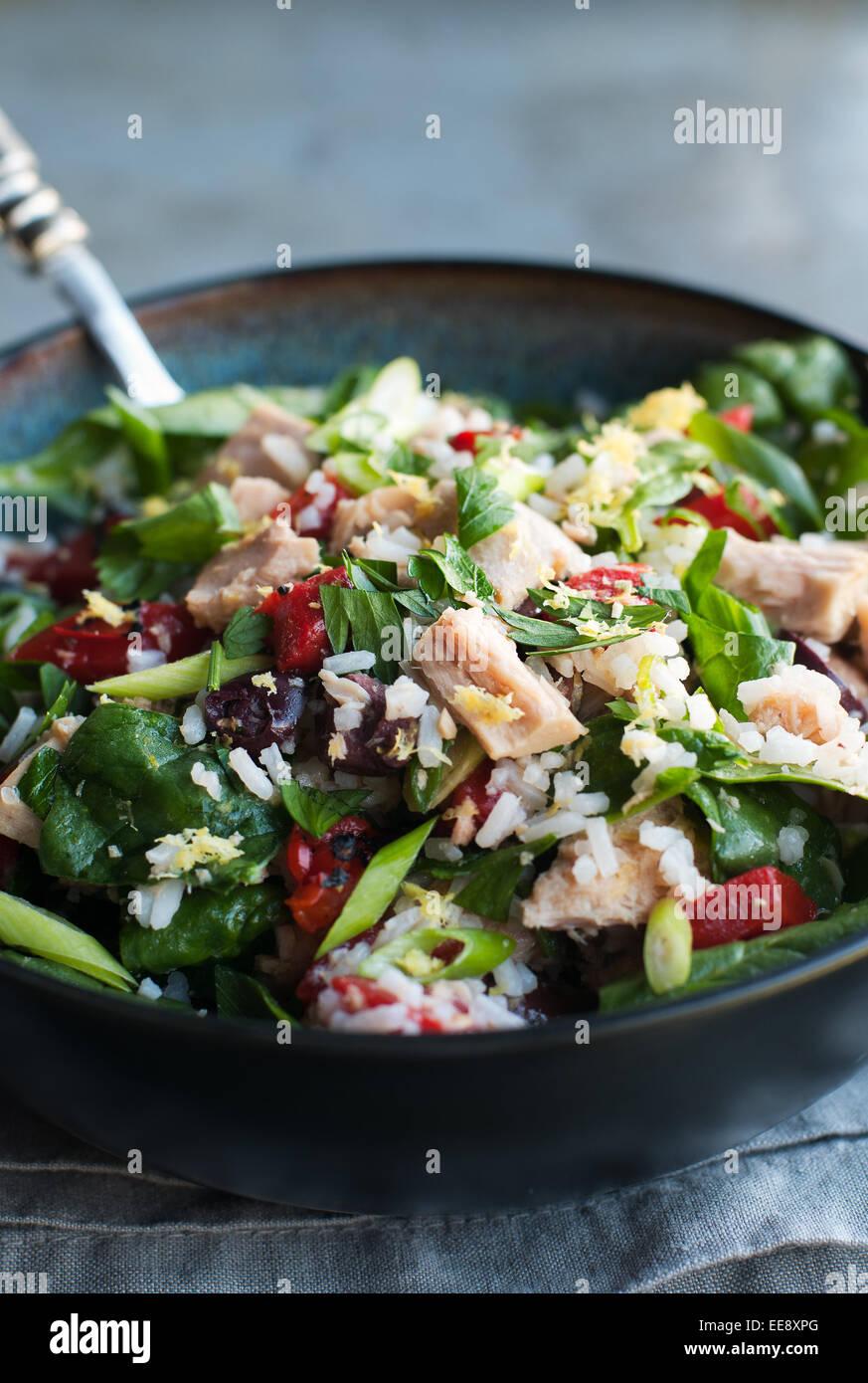 Salade verte avec du thon, du riz et des légumes Photo Stock