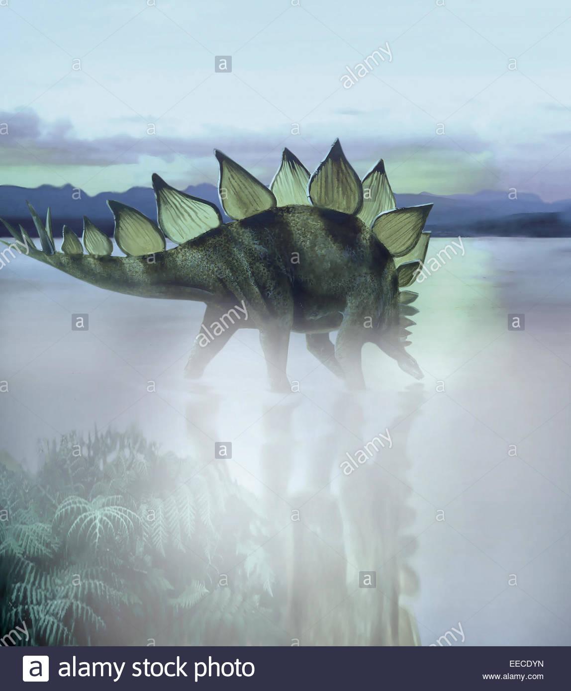 Un dinosaure Stégosaure paissant dans un lac préhistorique. Les plaques sur un stégosaure dos étaient Photo Stock