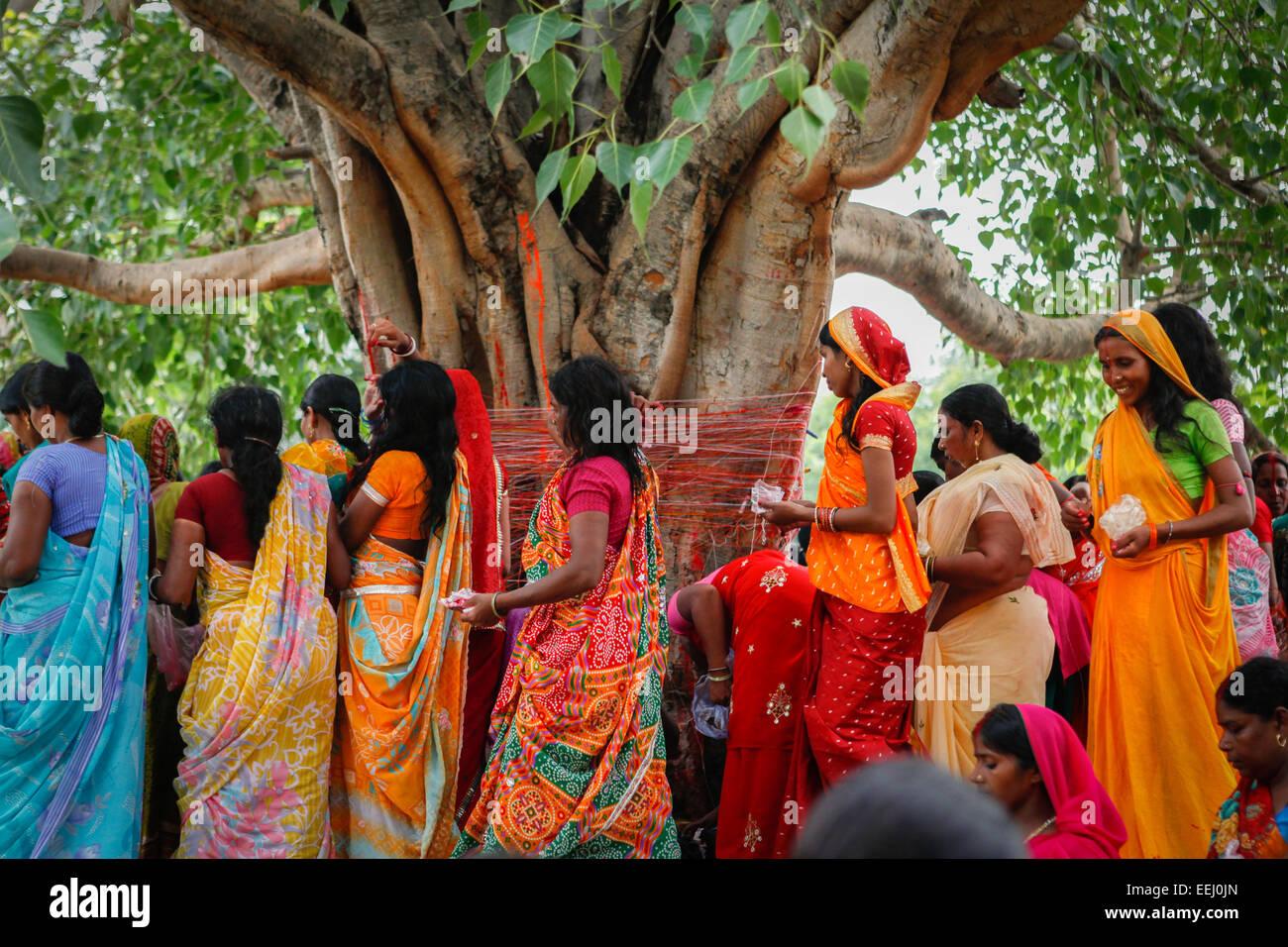 Les femmes d'encercler la sainte arbre de bodhi dans Lakshmi Narayan Temple complexe à Rajgir. Photo Stock