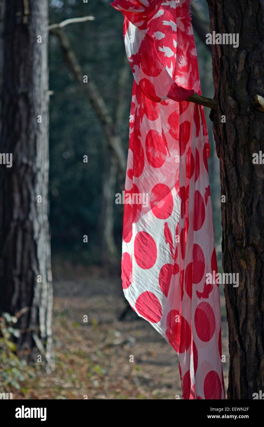 Foulard rouge hanging on tree Photo Stock