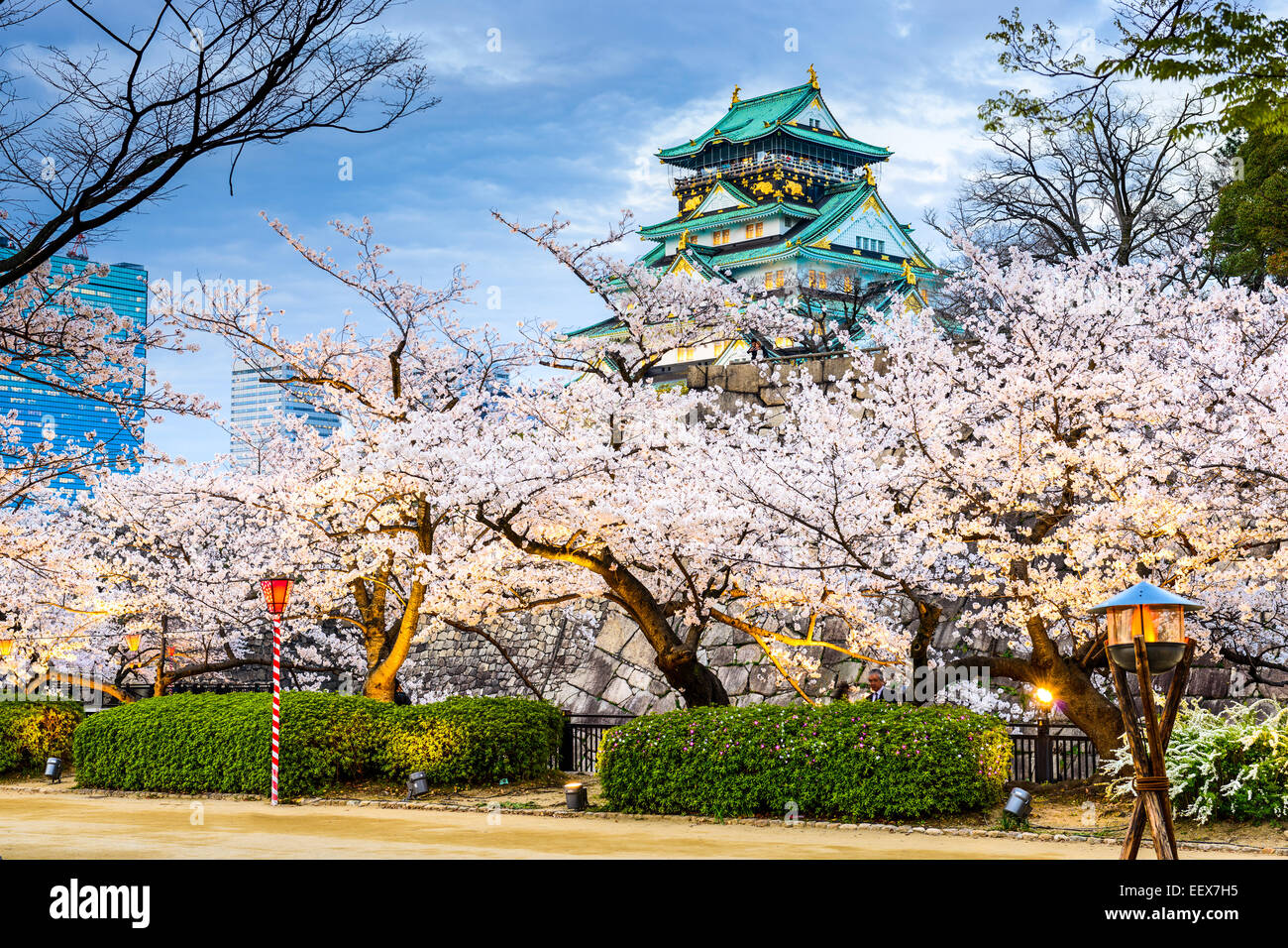 Osaka, Japon au château d'Osaka durant la saison de printemps. Photo Stock