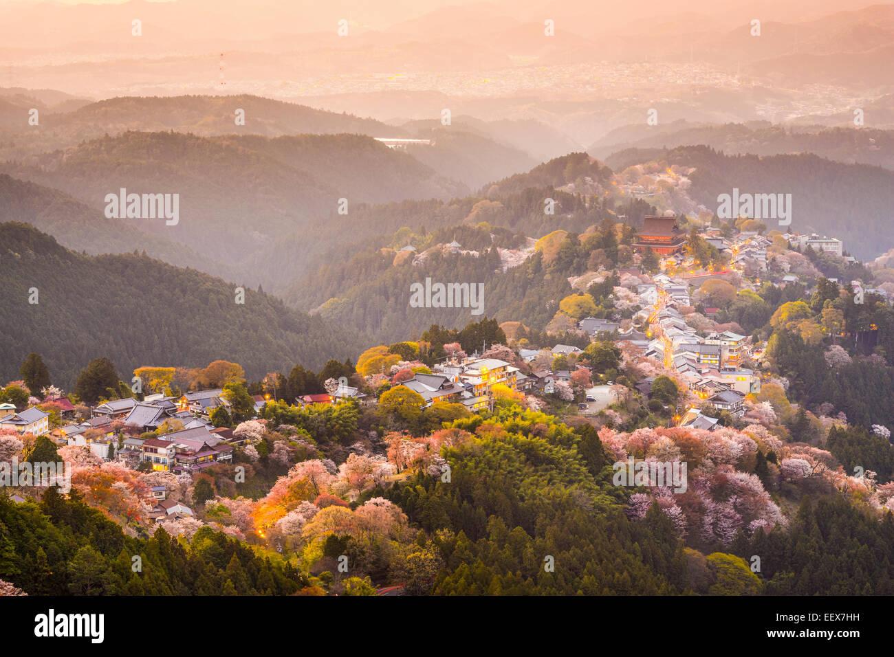 Yoshinoyama Nara Japon Vue Sur La Ville Et Des Cerisiers Durant