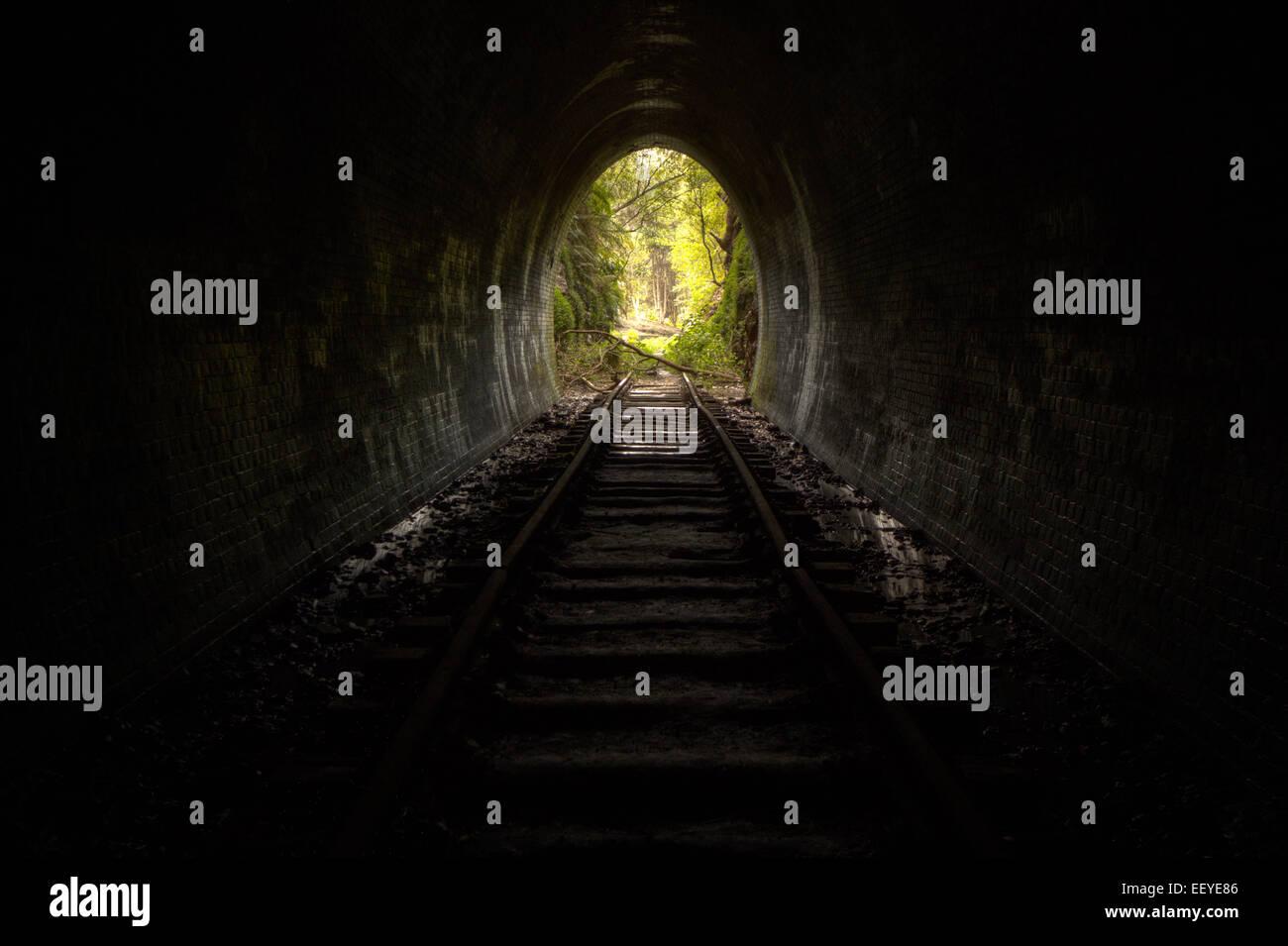 Abandonner le tunnel de train Photo Stock