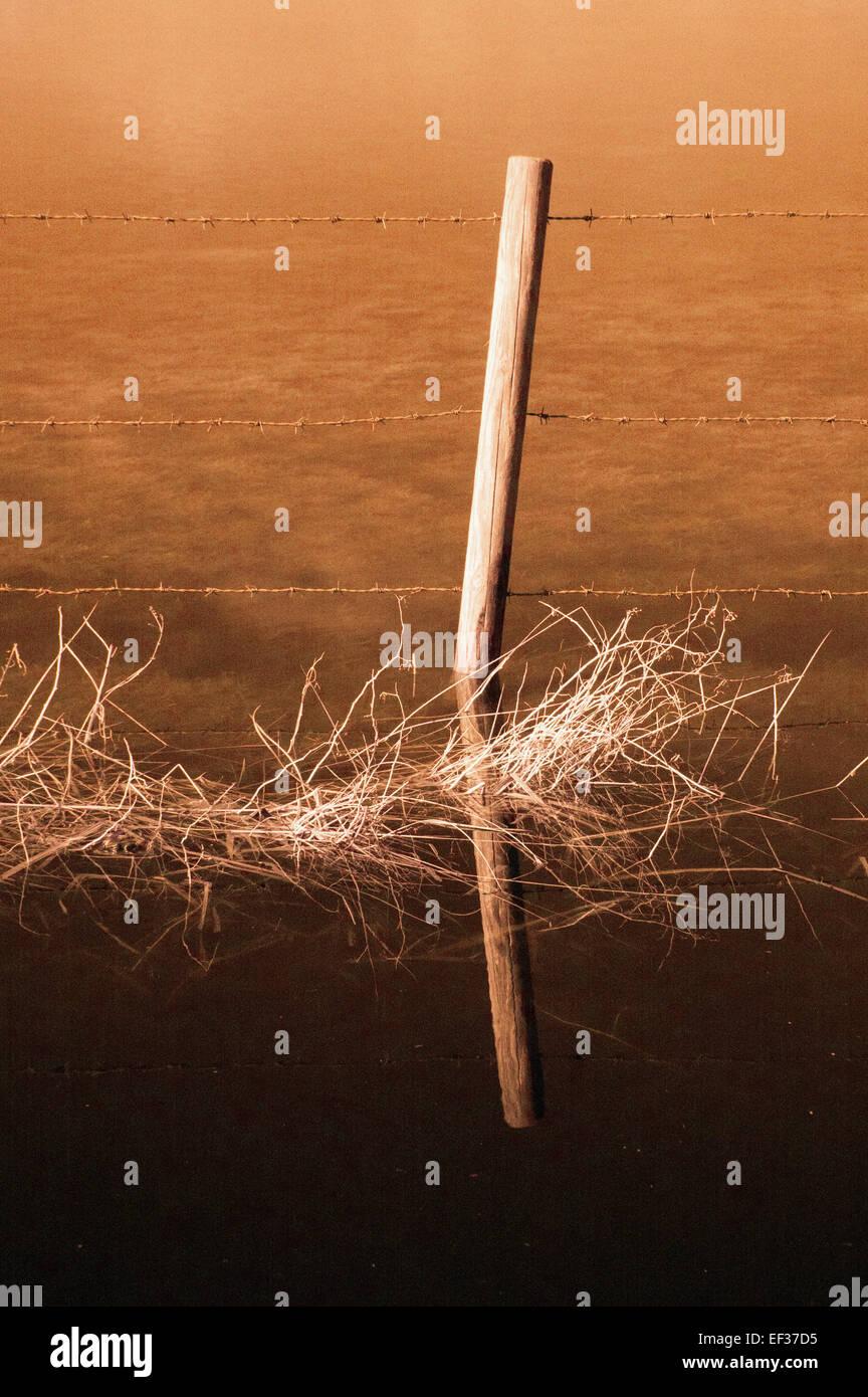 Clôture en fil barbelé Photo Stock