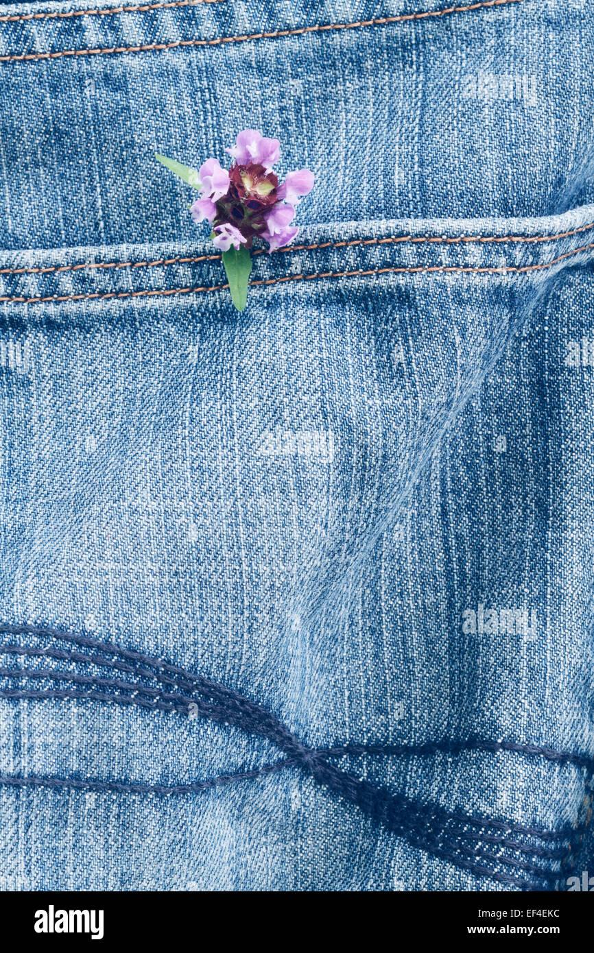 Concept, fleur dans une poche de pantalon jean Photo Stock