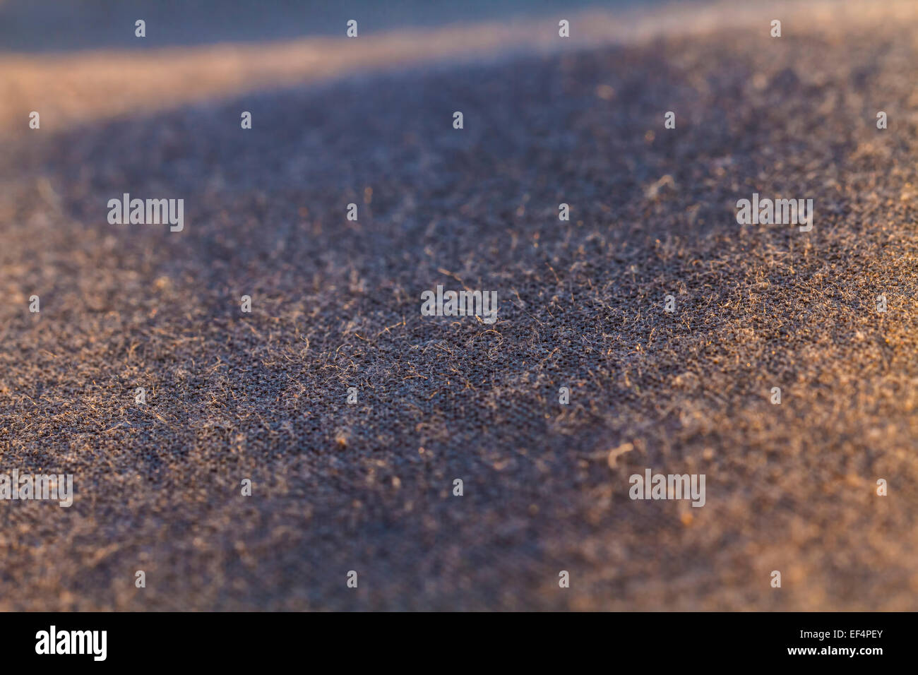 Tissu, abstract background, macro shot Photo Stock