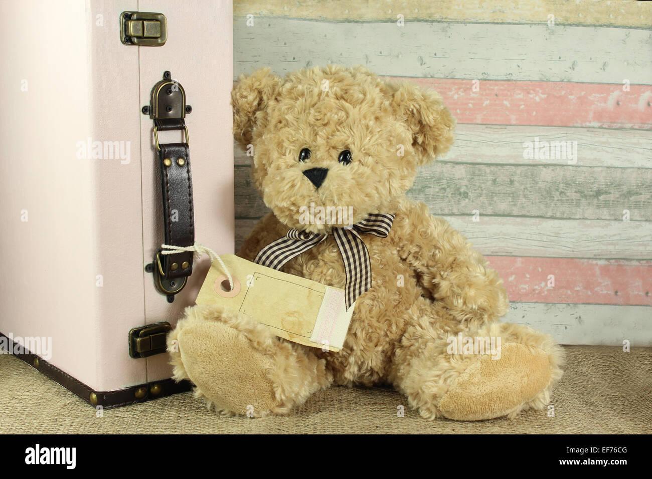 Ours en peluche avec vintage suitcase et blank tag pour votre propre texte Photo Stock