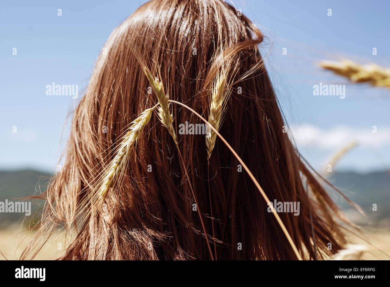 Vue arrière de la tête de la jeune femme avec l'épi de blé Photo Stock