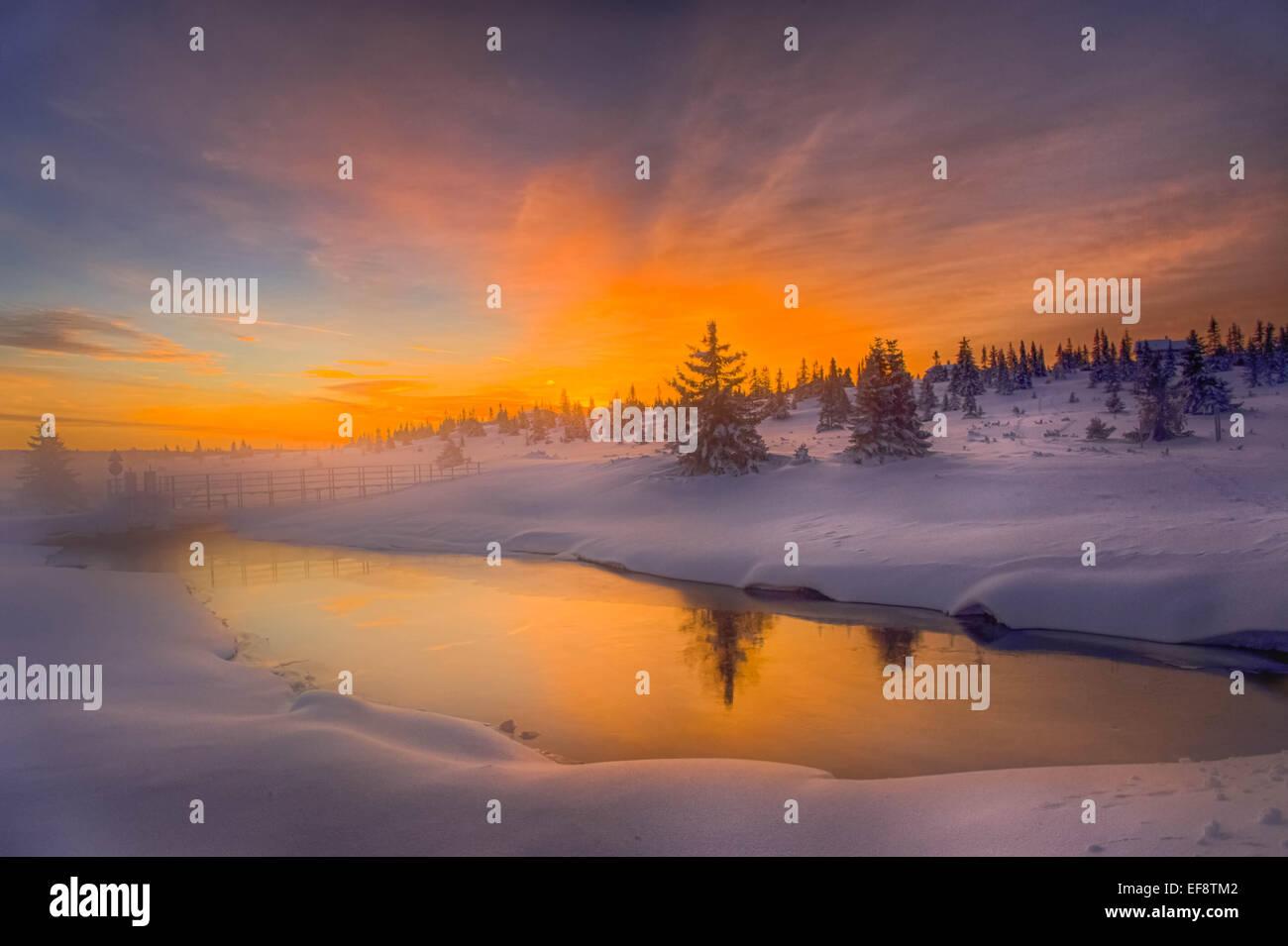 La Norvège, Namsos, paysage d'hiver avec du brouillard au lever du soleil Photo Stock